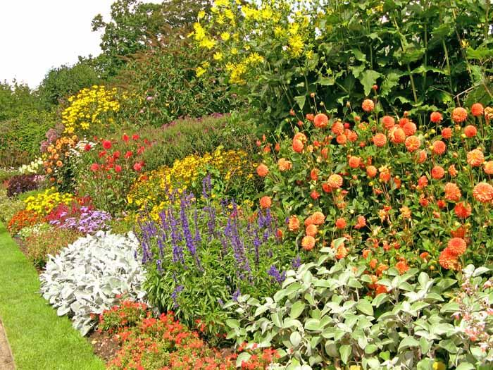 A beautiful sunny multi coloured and  leveled border in a stately home